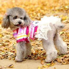 Aliexpress.com: Comprar Nuevas pequeñas mascotas ropa para perros mascotas perro vestido de primavera y verano perro de mascota ropa falda de lujo Tutu Dress Pet productos para perros de vestidos de Canadá fiable proveedores en Susan's Convenience Store