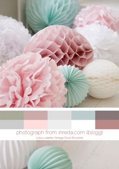 PomPoms ||  Colour Palette