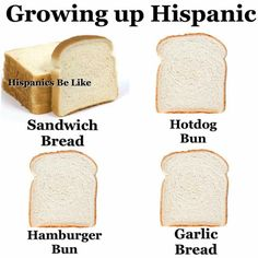 Growing up Hispanic