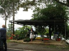 Panama.  Fruit stand.