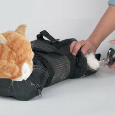 Cat Grooming Bag – MEDIUM, cat restraint bag + FREE Cat Muzzle by, Downtown Pet Supply « DogSiteWorld.com – DogSiteWorld-Store