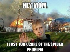 Took care of the spider by slapcaption