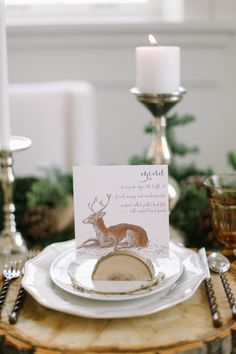 Rustic Elegant Winter Place Setting | photography by http://jacquelynnphoto.com/
