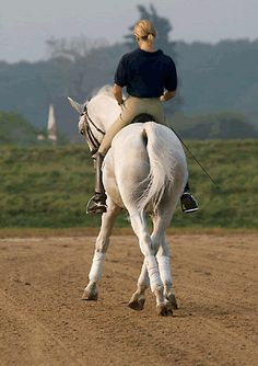 Beautiful in every way....horse and rider