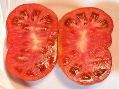 """Sybirskij Kozyr (""""Atut Syberii""""). Krzew teoretycznie (czyli zgodnie z tym co napisane na opakowaniu nasion) wysokości do 80cm, u mnie wyrósł na grubo ponad metr. Bardzo plenny, pomidory duże o masie ok.500g. Miałem go pod folią i w gruncie. Zdecydowanie w gruncie czuł się lepiej. Ciężar owoców powoduje konieczność solidnego podpierania rośliny. Roślina bardzo na wszystko odporna. Temperatura, choroby i kiepski ogrodnik (mówię tu o sobie) nie są w stanie przeszkodzić w plonowaniu. Pomidory… Vegetables, Food, Meal, Eten, Vegetable Recipes, Meals, Veggies"""