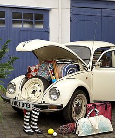 I want this Bug! It's so cute :)