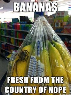 35 Problems All Australians Know: +1's in banana bags.