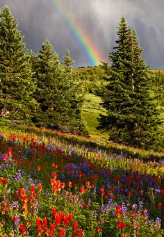 Rainbow over Shrine Ridge, near Vail in the Rocky Mountains, Colorado All Nature, Amazing Nature, Amazing Grace, Nature Vs Nurture, Beautiful World, Beautiful Places, Best Photographers, Rocky Mountains, Colorado Mountains