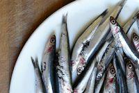 Ποια ψάρια είναι φρέσκα, ανάλογα την εποχή Sos Food, Food And Drink, Fish, Meat, Recipes, Cook, Pisces, Ripped Recipes