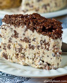 Nutella Crunch Ice Cream Cake