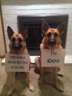 Sorry for the naughty word but this just made me think of Trigger and Ruger. :)