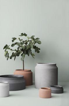 Ferm Living Vase on YOOX. The best online selection of Vases Ferm Living. Large Plant Pots, Large Plants, Potted Plants, Ceramic Plant Pots, Ceramic Flower Pots, Indoor Planters, Indoor Garden, Planter Pots, Indoor Flower Pots
