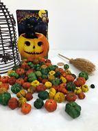 Orange, Green & Yellow Putka Pods Mini Pumpkins Potpourri Halloween Thanksgiving