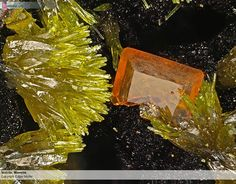 Stolzite, Mimetite Field of view 4,3 mm Collection: H. Hettrich Photo: Edgar…