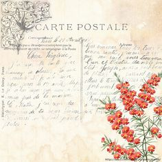 Vintage French Postcard and Floral Background