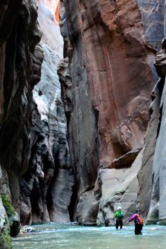 Hiking the Narrows at Zion National Park.  One of the coolest National Parks out west.