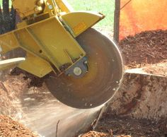 http://www.abcstump.com/red-deer-stump-grinding/ At ABC Stump Red Deer, we provide professional, fast and affordable stump removal and grinding service. We use latest equipment such as self propelled grinder, Magnum Chainsaw. Shindaiwa blower to ensure the job is done fast and its done right. Call us now at (780) 995-7618