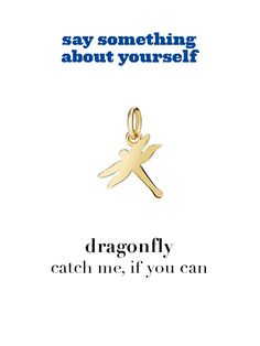 Dodo charm: dragonfly - catch me, if you can