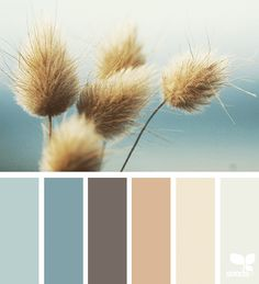 Here are a few more color palettes to inspire your next bathroom remodel or redecoration project.
