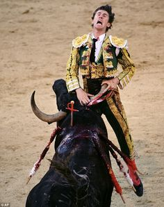 Pain is etched on Israel Lancho's face as the bull's horn pierces his body