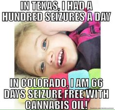 Living in Texas, this child had One Hundred seizures a day. Now, living in Colorado, where Medical Marijuana is legal, she is now 66 days seizure free using Cannabis Oil. | We can not let the Pharmaceutical Industry get in the way of legalizing this plant as it was for 12,000 years before racism and greed took over the US government and dictated it be made illegal.
