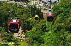 Gondola Lift, Glass Floor, Taiwan, My Love