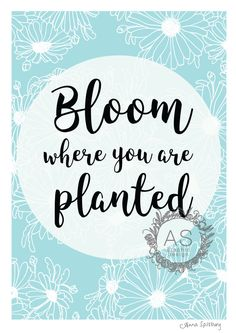 Bloom Where You Are Planted- Powder Blue Full Page- PRINTABLE ART, Instant Download by AnnaSpilsburyDesign on Etsy https://www.etsy.com/au/listing/484383229/bloom-where-you-are-planted-powder-blue