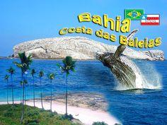 Costa das Baleias, Bahia Brasil