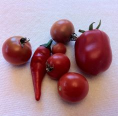 Container Harvest - August 14th, 2012.