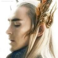 Lee Pace / Thrandruil side view- I wish I had someone to make this costume for / Halloween or Cosplay. Everything about it is elegant.