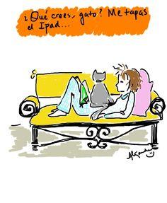 ¿Qué crees, gato?