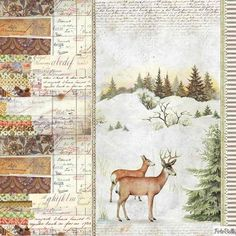 Paper Pad - Winter Botanic Double Sided Sheets) by Stamperia for Scrapbooks, Cards, & Crafting Christmas Deer, Christmas Crafts, Xmas, Winter Background, Paper Background, Christmas Scrapbook Paper, Rice Paper, Christmas Inspiration, Vintage Images