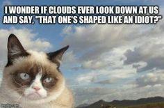Grumpy Clouds see idiots