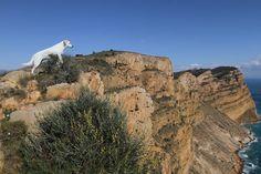 Sierra Helada de Benidorm, Alicante