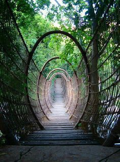 Amazing Places you Should Visit in Your Life - The Spider Bridge in Sun City Resort, South Africa