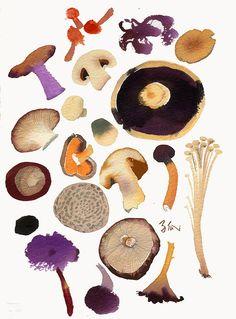 Mushrooms - Meilo So