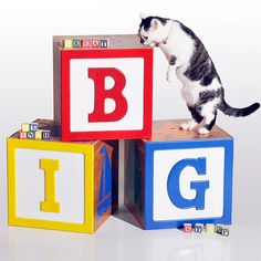 Giant toy block toy storage boxes.  GreatBigStuff.com $149.77
