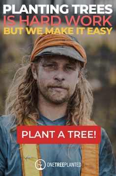 Planting trees is hard work, but we make it easy for you! Support reforestation in British Columbia this planting season to help restore nature after fires and benefit clean air, water, climate, and local communities. Tree Planting, Trees To Plant, Bonsai Trees, Fruit Trees, Dollar Plant, Painting Walls Tips, Greenhouse Farming, Tree House Plans, Yard Care