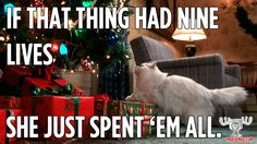 Great Christmas Vacation quote from Cousin Eddie