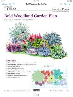 BHG bold garden plan