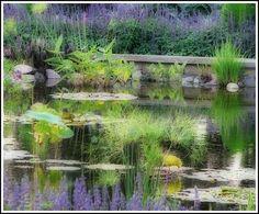Sunken Gardens Lincoln NE