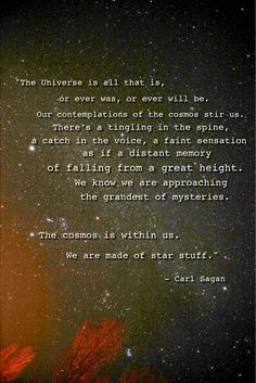 """The Universe is all that is, or ever was, or ever will be. Our contemplations of the cosmos stir us. There's a tingling in the spine, a catch in the voice, a faint sensation as if a distant memory of falling from a great height. We know we are approaching the grandest of mysteries. The cosmos is within us. We are made of star stuff."""" ~Carl Sagan."""