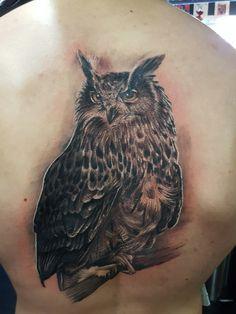 Owl by Sanya