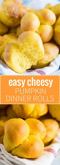 These easy Pumpkin Dinner Rolls are made with Cheddar and are so soft and fluffy! Perfect for Thanksgiving!