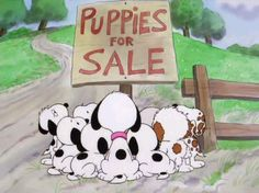Daisy Hill's Puppies for Sale