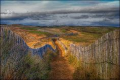 500px / Coastal Trail by Emmanuel LEMEE