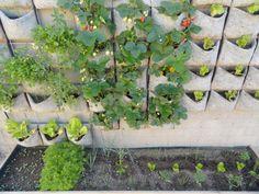 huerto vertical fresas, aromaticas, lechugas,... www.vertiflor.com