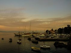 Opatija evening harbour of where it all began New York Skyline, Travel, Voyage, Trips, Viajes, Destinations, Traveling
