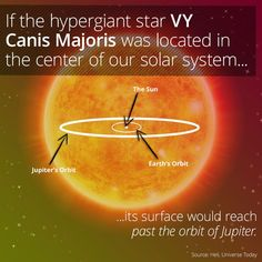 I just learned something awesome via @curiositydotcom: VY Canis Majoris Makes Our Sun Look Like A Speck
