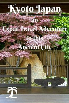 Kyoto Japan an Expat Travel Adventure to this Ancient City- 1AdventureTraveler | I can't seem to get enough of these ancient temples, colorful shrines, and lush green gardens. Visit the land of the rising sun and have a wonderful experience.